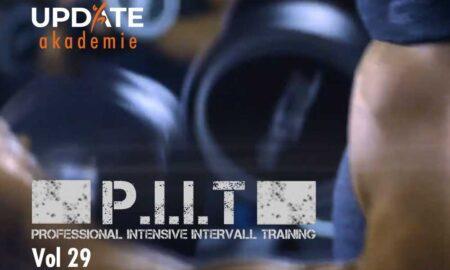 P.I.I.T 29